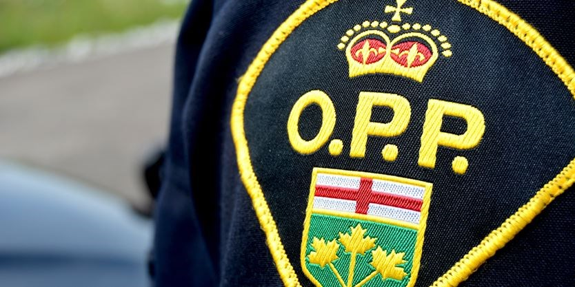 'Aggressive' Hamilton driver arrested in Port Dover